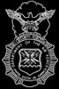security forces logo