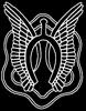 2/17th air cavalry